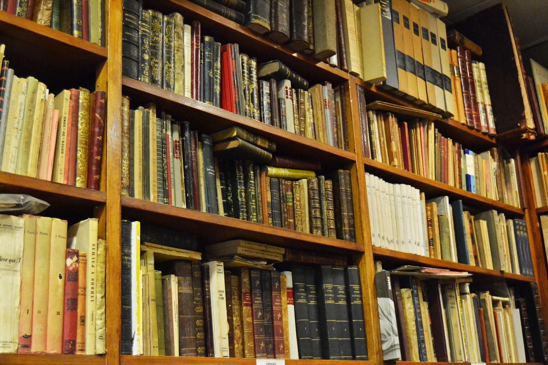 ヨーロッパの洋書古本が収められた古書店の本棚