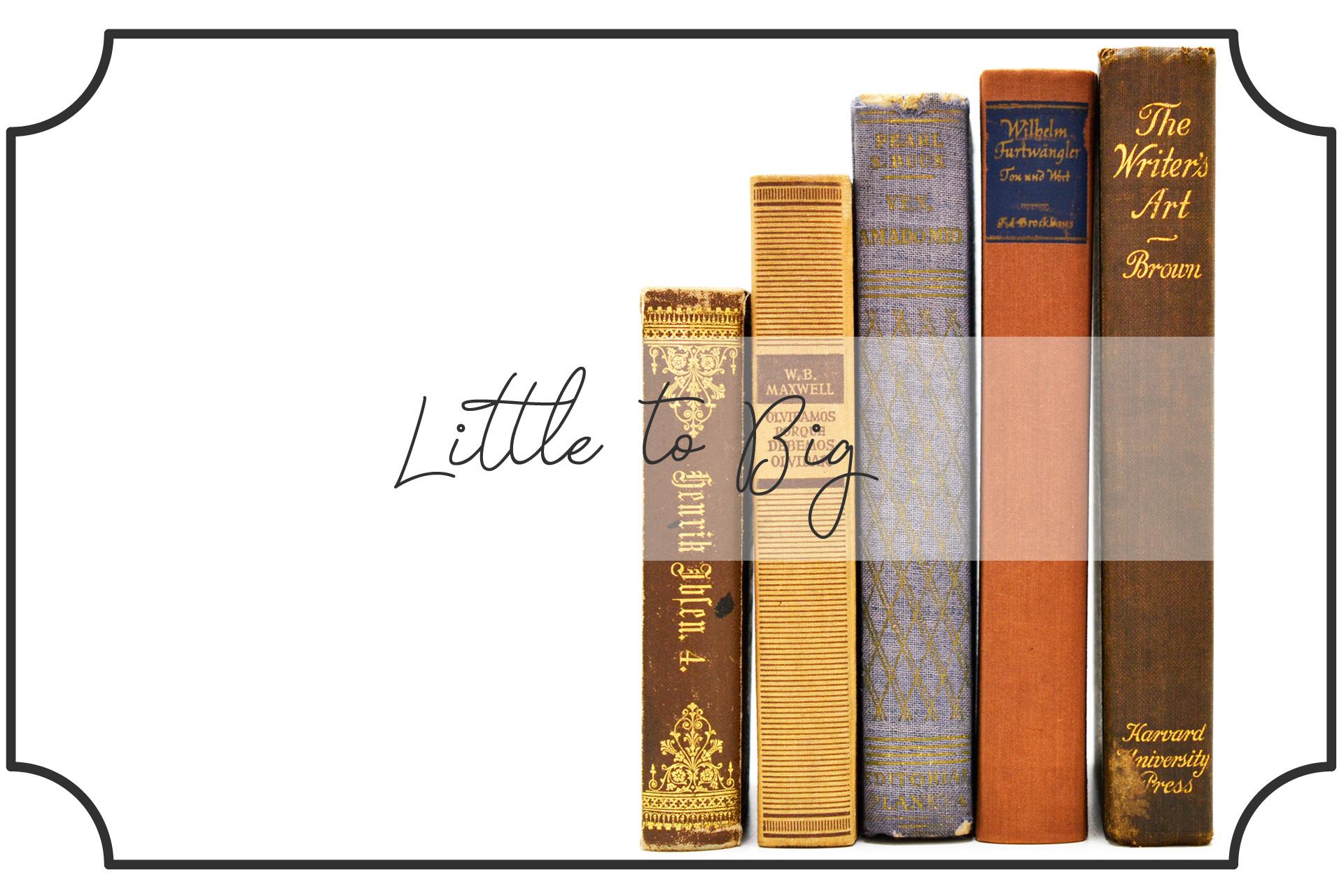 小さい本から大きい本